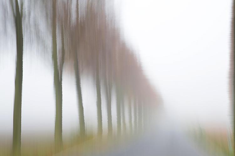 Katja Richter . . . unterwegs im Herbst