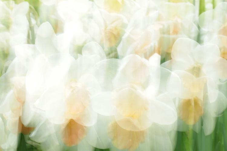Katja Richter . . . unterwegs im Frühling